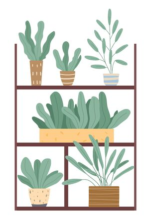 Set of green indoor houseplants and flowers in pots icons on white. Plants growing in pots or planters. Collection of beautiful natural home and office decorations. Trendy vector in flat cartoon style 向量圖像