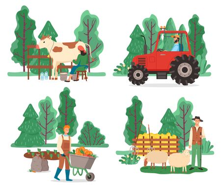 Collection of farming equipment and people working on field. Man transporting harvested pumpkins, shepherd with sheep. Milkmaid with cow and driver of tractor cultivating soil, vector in flat