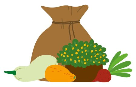 Burlap bag, sack with seasonal vegetables. Big crop on farm. Zucchini, parsley, turnip, beet. Autumn fall harvest festival concept flat vector illustration Ilustracja