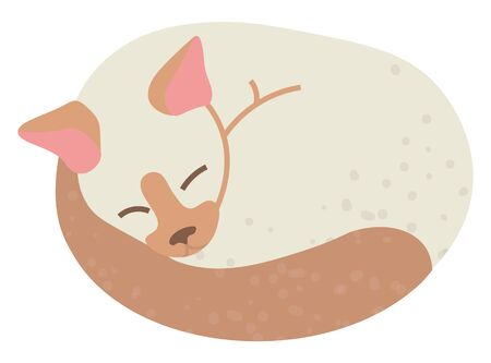 Sleeping cat vector, isolated kitten taking nap flat style. Fluffy domestic pet adorable creature, sleepy resting feline animal with ears and tail Ilustração