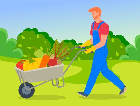 Farmer wearing in overalls pushing a wheelbarrow full of vegetables. Agricultural worker, autumn harvest. Man going with vegetables in cart, harvesting tomato, pumpkin, carrot, beet, potato, pepper 向量圖像
