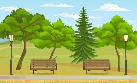 Public park at summer. Green nature, wooden benches and street lights, trees, fir tree, sky at background. Summer or spring with green plants. City park, relax place for visitors. Recreation outdoors 免版税图像 - 151127733