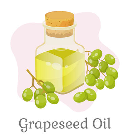 Glass bottle closed with bung with liquid inside. Branch with green small grapes. Vessel with grapeseed oil used for cooking or beauty industry like hair care. Vector illustration in flat style