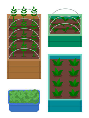 Set of boxes with garden. Growing plants in wooden boxes with soil. Breeding plants. Seedlings of vegetables, salad or flowers. Cucumbers, harvest in box. Green sprouts, agriculture at home concept Stock Illustratie