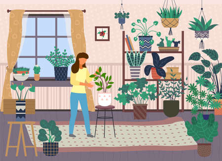 Woman spray plant with water. Female caring for house plants. Green home garden or greenhouse with plants in pots. Growing houseplants. Home leisure, hobby, everyday activities. Home jungle design