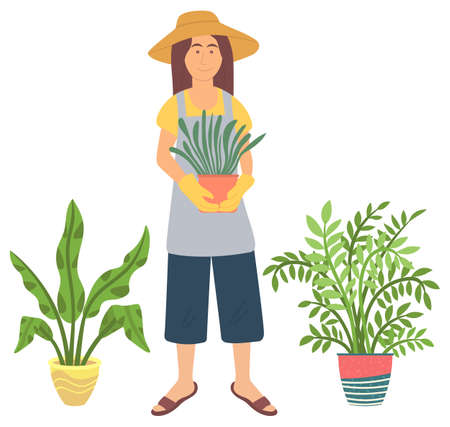 Woman with houseplants in pots vector, isolated female hobby of character wearing hat and apron. Smiling lady with potted plant, gardening and relaxation