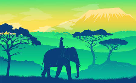 Elephant in the African savanna at sunset. Wild acacia, mountaines. Silhouettes of an animal and a person sitting on it. Realistic vector landscape. The nature of Africa. Reserves and national parks  イラスト・ベクター素材