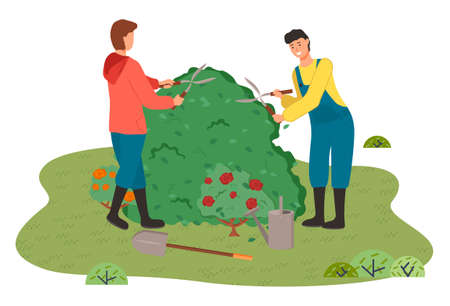 Gardeners man in coveralls cut the bush with clippers. Blooming red rose bushes, watering can, garden shovel, garden tools. Outdoor activity. Gardening and floristry. Urban agriculture. Flat style