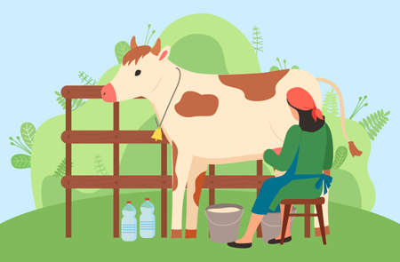 Milkmaid is working at countryside, sitting on chair and milking cow in rural area. Woman farmer in uniform near cow on nature landscape. Back view of woman wearing an apron pouring milk into bucket