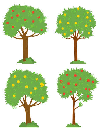 Harvesting vector, isolated trees red and yellow apples. Garden with plants and bushes, foliage and branches. Summer or autumn season picking fruits outside. Picking apples concept. Flat cartoon