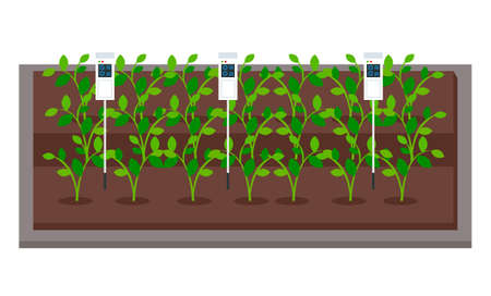 Control the smart farm and agriculture. Growing vegetables in laboratory, using soil analyzer. Cultivation of green sprouts. New technologies. Modern approach in urban agriculture. Hydroponics system