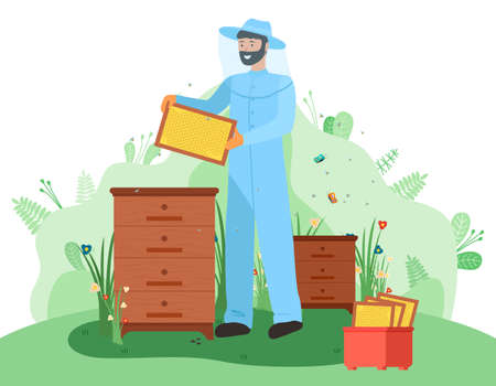 The beekeeper in hat with protective fine mesh and in overalls holds a frame with honeycombs. Honey bees. Beekeeping. Houses for bees, beehives. Get honey. Sweet, wax, mummy. Useful food products Ilustração