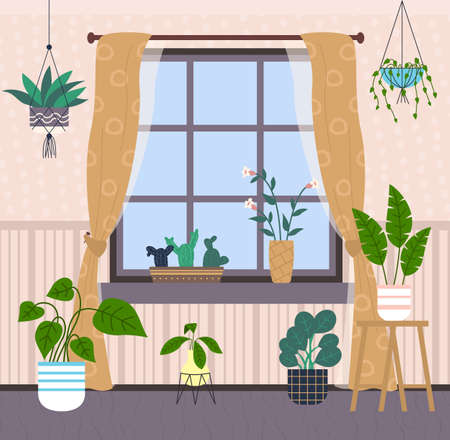 Window, light brown curtains with pattern, many potted plants, hanging flowers, cache-pot, cacti on windowsill. Home gardening. Striped pastel wallpaper. Gray floor. Cozy living room. Stay home