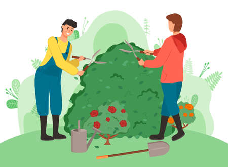 Gardeners cutting bushes cartoon vector illustration. Farmworkers using gardening scissors. Male character working with bush clippers. Summer and spring seasonal work in yard. Landscaping, farming