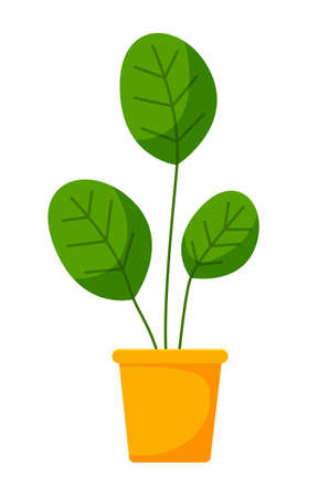 Pot with houseplant isolated at white background. Vector flowerpot of decorative green plant with long leaves in ceramic pot. Indoor plant concept of domestic greenery. Icon for home interior plant