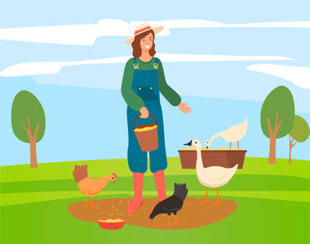 Young woman or girl farmer in hat and overalls feeds poultry grain. Girl takes care of chickens, geese. Woman nourishes hens and geese. Female stands on green meadow with poultry. Flat image Vettoriali