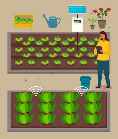 Urban agriculture, farmer woman using modern technology, distance control of growing process with digital tablet, developing farm infrastructure, grower control process of farming, growing eco plants