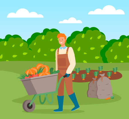Farmer wearing in overalls and rubber boots pushing a wheelbarrow full of vegetables. Agricultural worker, autumn harvest. Man going with vegetables in cart, harvesting tomato, pumpkin, carrot