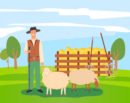 Male character of shepherd with sheep, flat vector illustration design. Young farmer man in hat standing with shepherd s stick near farm animal. Green meadow rural landscape with grass and hay