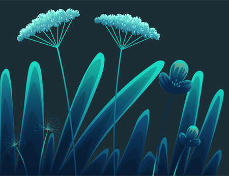 Summer time at night, navy blue background. Plants of fields and forests close-up. Vector vintage botanical illustration. Meadow grass, dandelion, chamomile, tansy. Medicinal plants. Flat vector