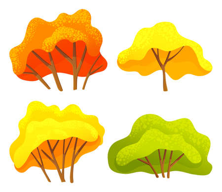 Autumn tree or bush set with a lush crown yellow and orange color, thin brown trunk and branches on white. Vector illustration of big plant with foliage round shape, landscape element in cartoon style