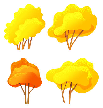 Yellow and orange bright autumn tree or bush set with a lush crown, thin brown trunk and branches isolated on white. Vector of big plant with foliage round shape, landscape element in cartoon style
