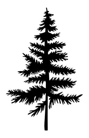 Black silhouette of fir-tree. Christmas tree. Simple tree icon. Nature concept. Black tree with needles isolated at white background. Decorative element. Plant shadow. Vector black illustration