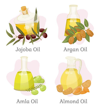 Jojoba and argan, amla and almond hair oils in bottles vector. Skin care and hair treatment, beauty and health, organic cosmetics, natural plants. Shampoo and hair conditioner ingredients illustration Çizim