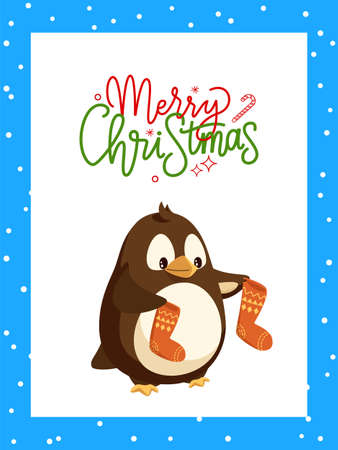 Merry Christmas greeting card with frame and lettering. Penguin cartoon character with socks in wings vector North Pole bird with Santa stockings 矢量图像