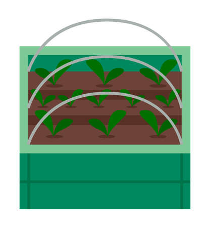 Vegetable garden flat vector illustration. Plants in the garden bed. Vegetable plant with green large leaves. Growing plants for a healthy diet cabbage, salad, spinach. Urban agriculture concept