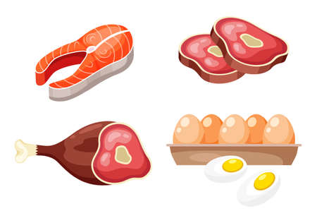Flat icons of raw meat, fish and eggs, animal sources of protein. High protein foods set on white background. Product group beefsteak, salmon steak, ham hind quarter, box with egg. Healthy diet food Vektorové ilustrace