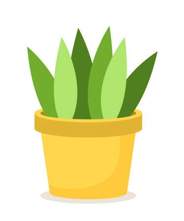 Green plant in yellow ceramic flower pot. Colorful leaves directed in opposite sides with different shades. A bright pot for a live plant. Planting isolated on white background, vector illustration