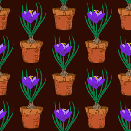 Seamless pattern with crocus in the pot. Vintage vector illustration.