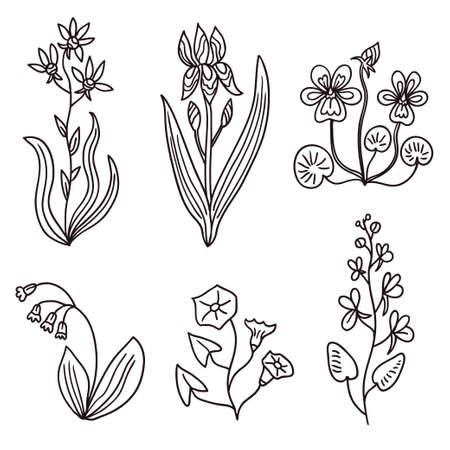 Big set of vintage original line art garden plants. Vector illustration Illustration