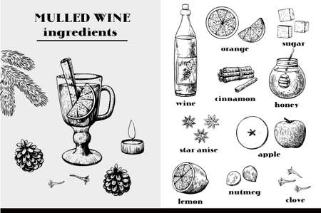 Mulled wine ingredients big set of ink black and white elements. Christmas and New year atmosphere. Vector illustration