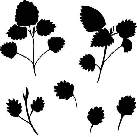 Set of black silhouettes of leaves and branches isolated on white background. Vector illustration