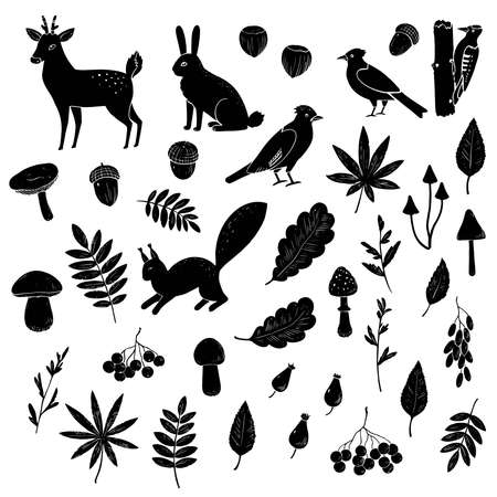 Big set of black and white silhouettes of forest animals, birds, mushrooms and berries. Vector illustration