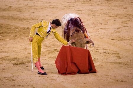 torero: MADRID - August 8: The torero Antonio Espaliu fights a bull named Lujoso in the Las Ventas bullring on August 8, 2010 in Madrid, Spain.