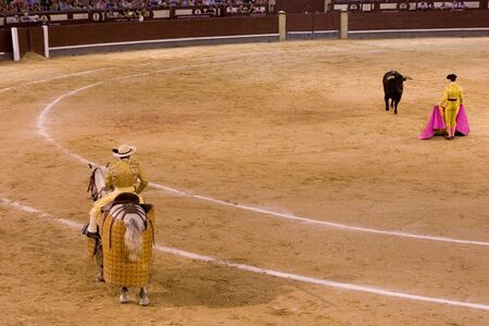 torero: MADRID - August 8: The torero Antonio Espaliu fights a bull named Calabaza in the Las Ventas bullring on August 8, 2010 in Madrid, Spain.