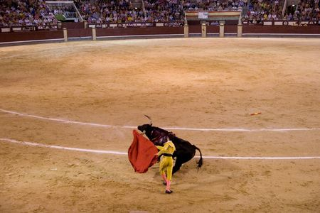 MADRID - August 8: The torero Antonio Espaliu fights a bull named Colgado in the Las Ventas bullring on August 8, 2010 in Madrid, Spain.