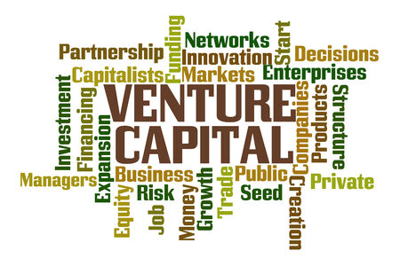 venture: Venture Capital Word Cloud on White Background