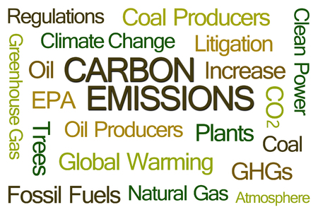 co2 emissions: Carbon Emissions Word Cloud on White Background