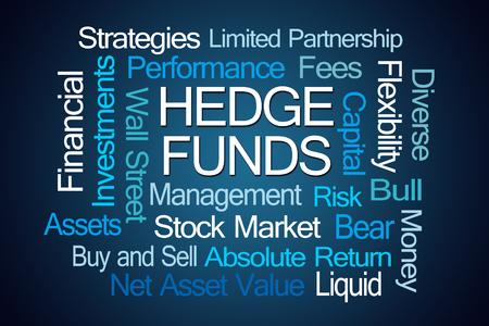 regulators: Hedge Funds Word Cloud on Blue Background