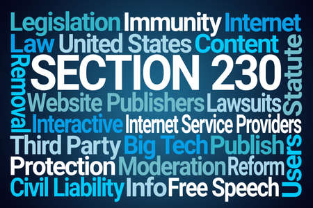 Section 230 Word Cloud on Blue Background