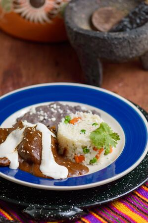 Mexican mole sauce with chicken, rice and black refried beans. Served alongside ingredients like chocolate and chilies. Traditional food from Oaxaca and other southern states on Mexico Zdjęcie Seryjne