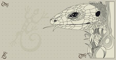 Vector Illustration of lizard on neutral graphic background