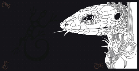 Vector Illustration of lizard on black graphic background
