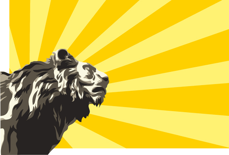cutthroat: illustration of lion on sunbeams background