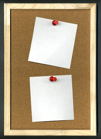 paper board: Image of cork board with blank paper and pins