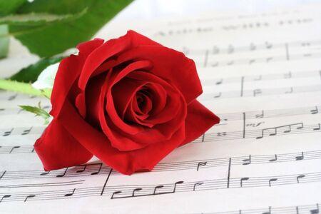 hymn: Red Rosebud resting on old sheet music.